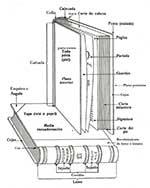Cuales son las partes externas de un libro